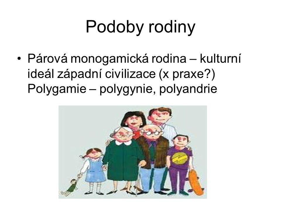 Podoby rodiny Párová monogamická rodina – kulturní ideál západní civilizace (x praxe ) Polygamie – polygynie, polyandrie.