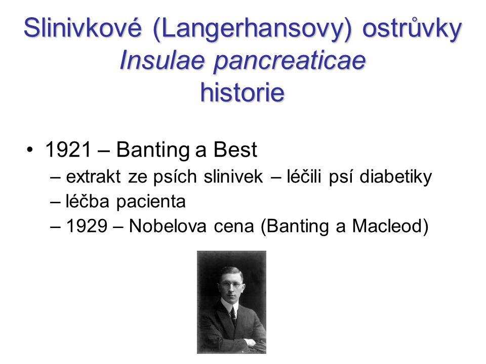 Slinivkové (Langerhansovy) ostrůvky Insulae pancreaticae historie
