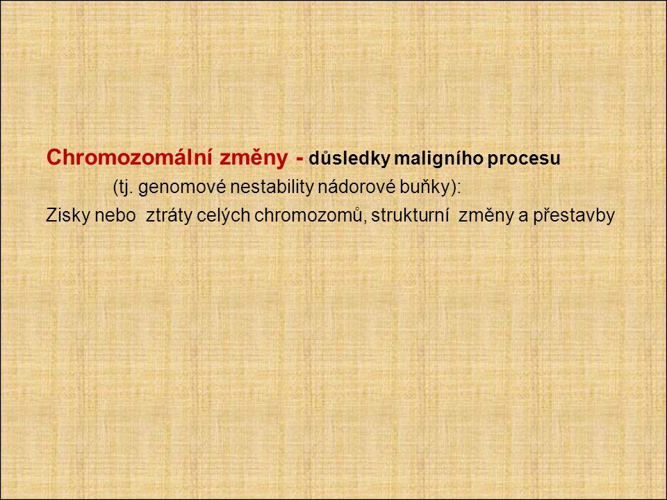 Chromozomální změny - důsledky maligního procesu. (tj