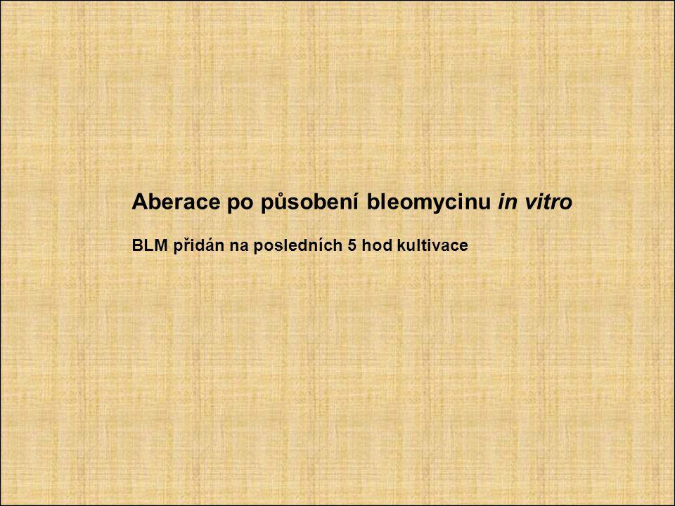 Aberace po působení bleomycinu in vitro