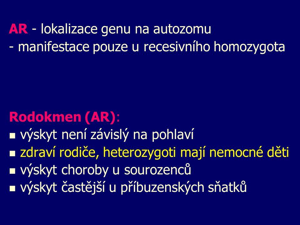 AR - lokalizace genu na autozomu