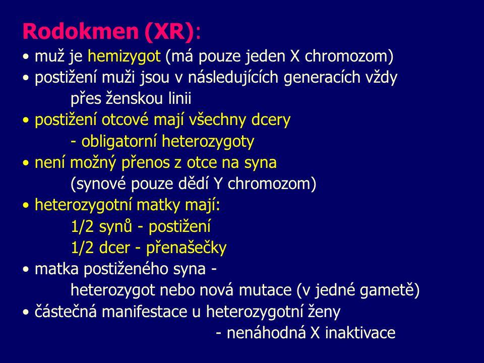 Rodokmen (XR): muž je hemizygot (má pouze jeden X chromozom)