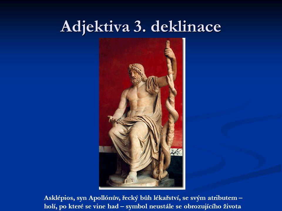 Adjektiva 3. deklinace Asklépios, syn Apollónův, řecký bůh lékařství, se svým atributem –