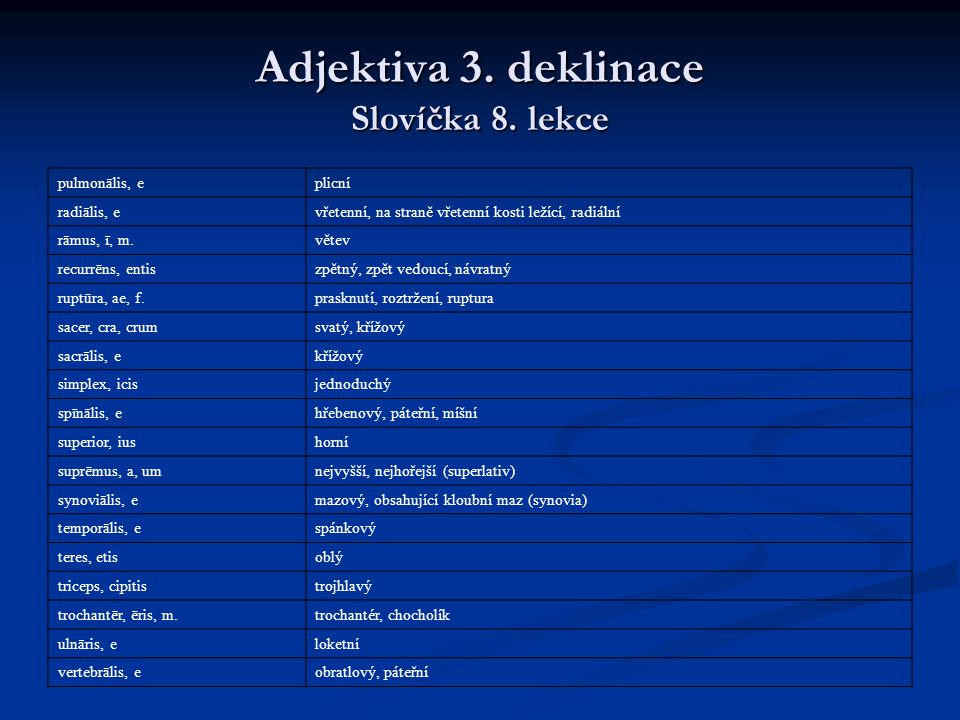 Adjektiva 3. deklinace Slovíčka 8. lekce
