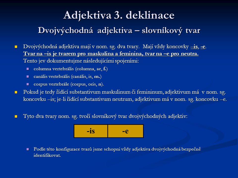 Adjektiva 3. deklinace Dvojvýchodná adjektiva – slovníkový tvar