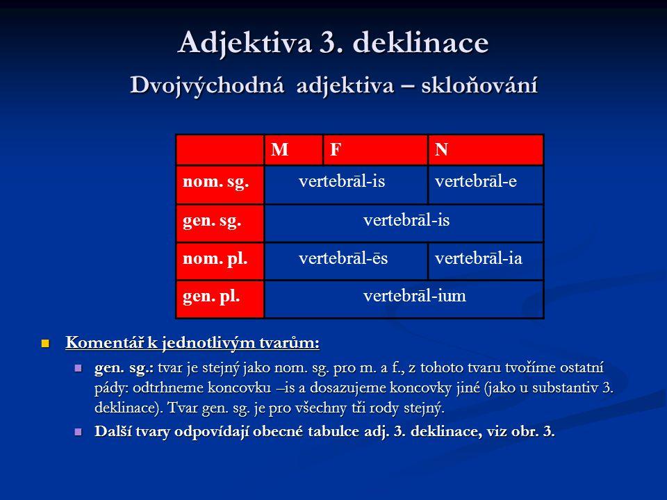 Adjektiva 3. deklinace Dvojvýchodná adjektiva – skloňování