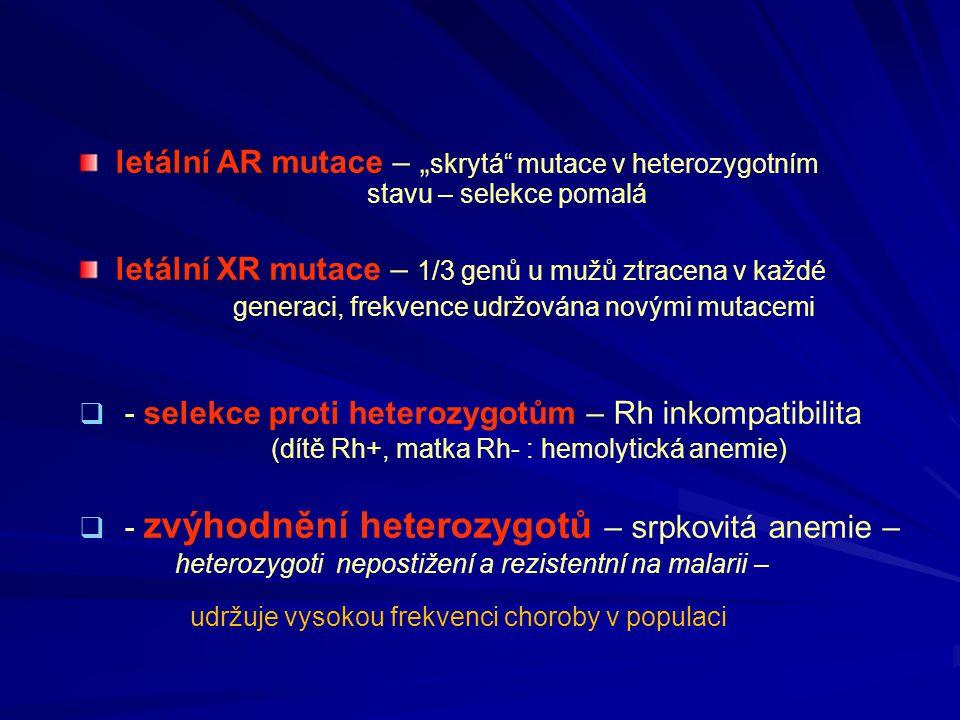 letální XR mutace – 1/3 genů u mužů ztracena v každé
