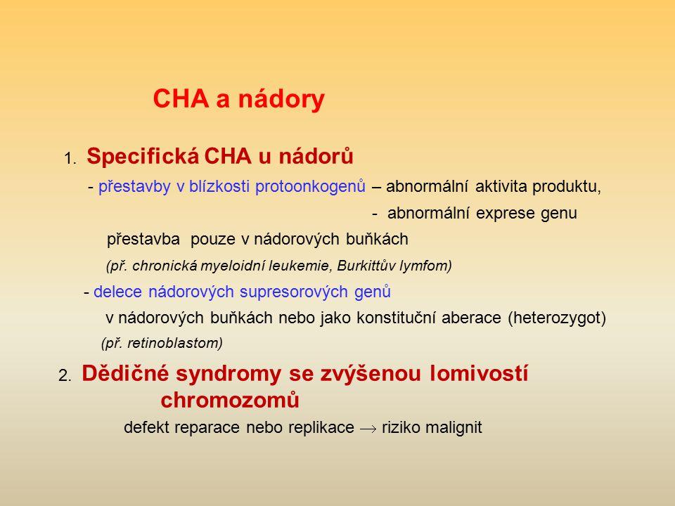 CHA a nádory 1. Specifická CHA u nádorů