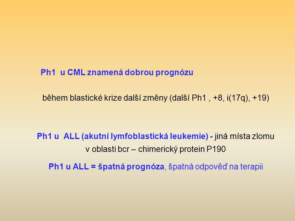 během blastické krize další změny (další Ph1 , +8, i(17q), +19)