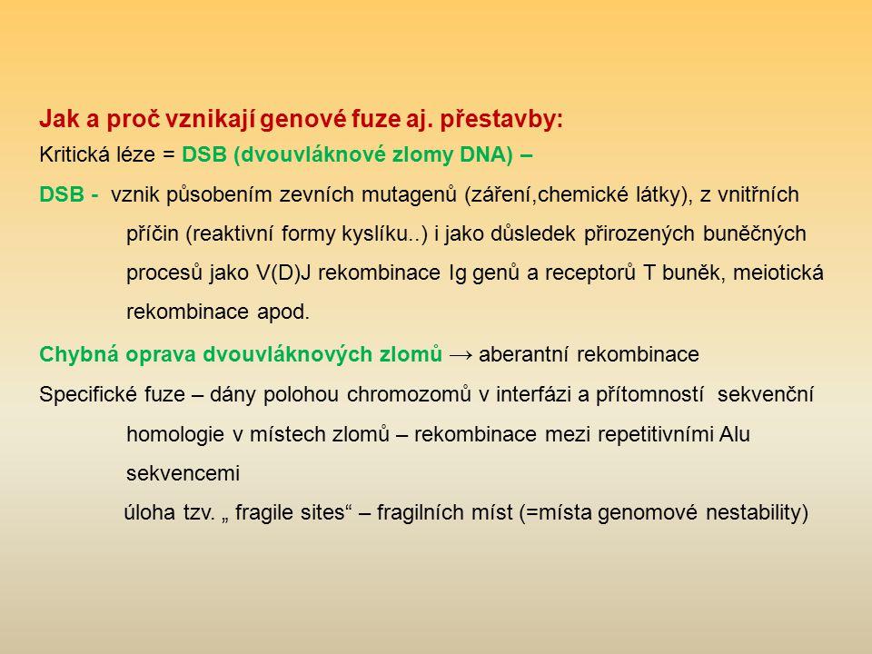 Jak a proč vznikají genové fuze aj. přestavby: