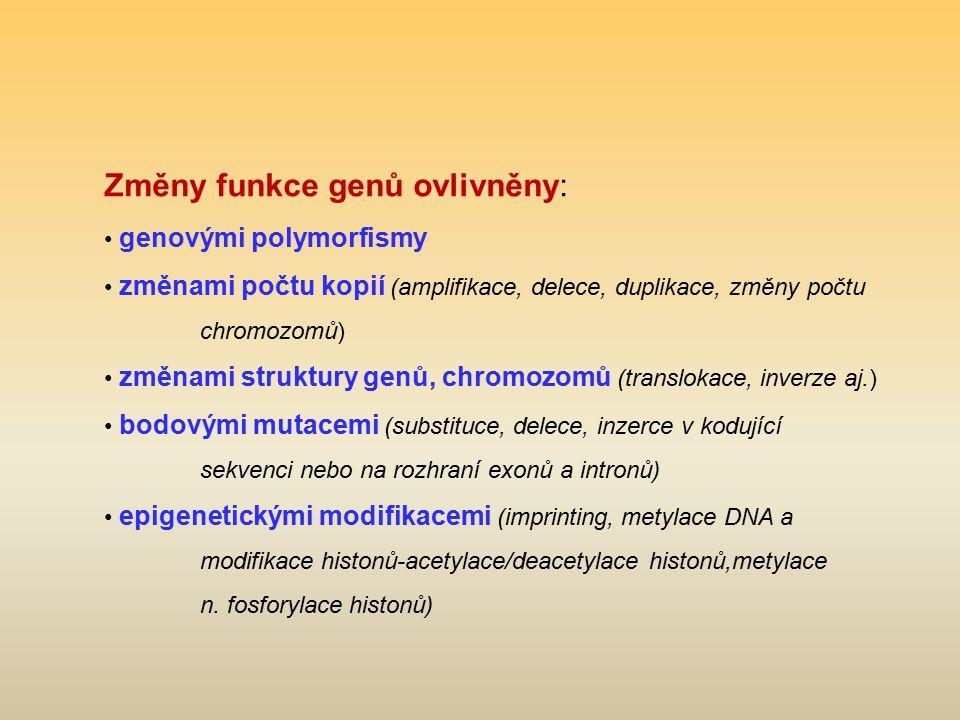 Změny funkce genů ovlivněny: