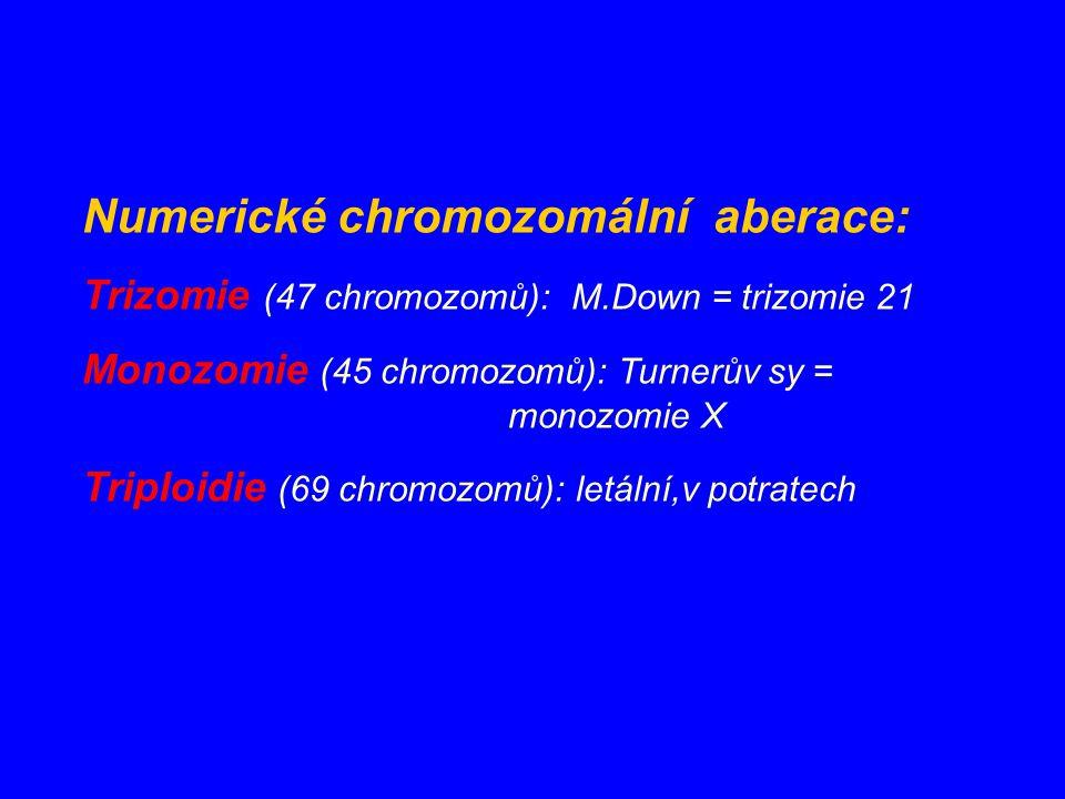 Numerické chromozomální aberace: