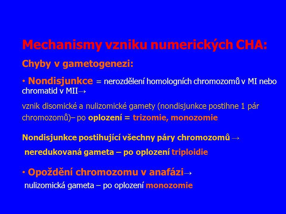 Mechanismy vzniku numerických CHA: