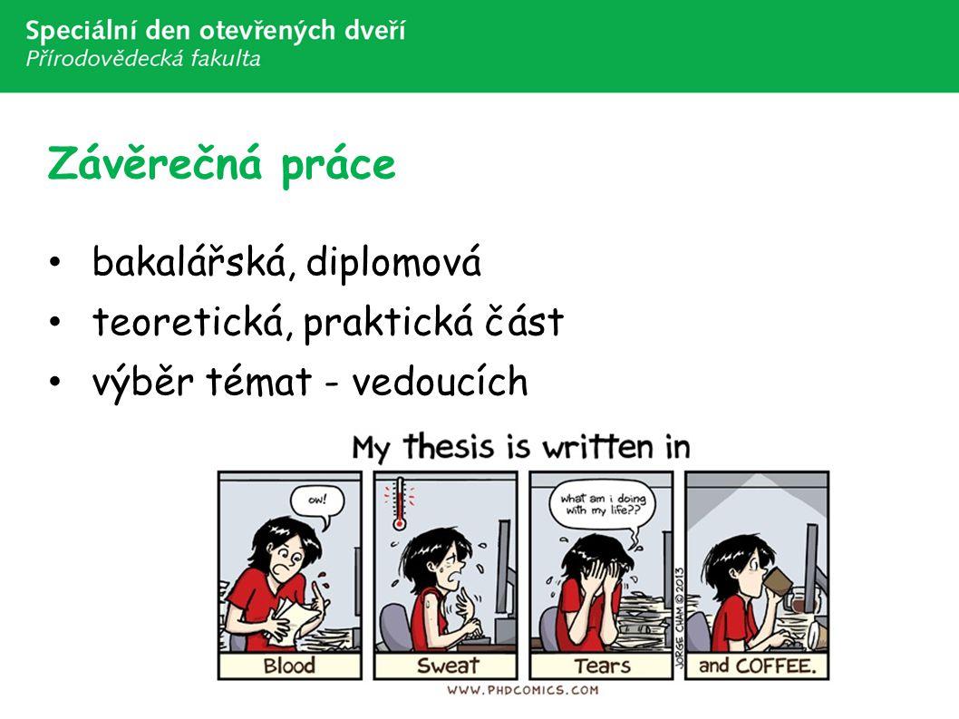 Závěrečná práce bakalářská, diplomová teoretická, praktická část