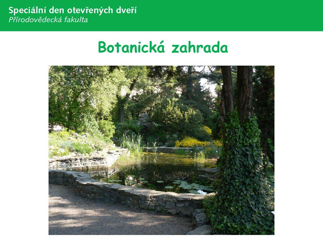 Botanická zahrada Botanická zahrada