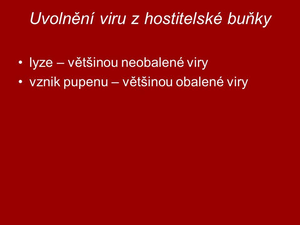 Uvolnění viru z hostitelské buňky
