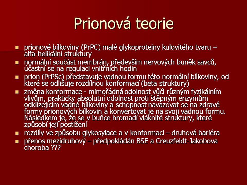 Prionová teorie prionové bílkoviny (PrPC) malé glykoproteiny kulovitého tvaru – alfa-helikální struktury.