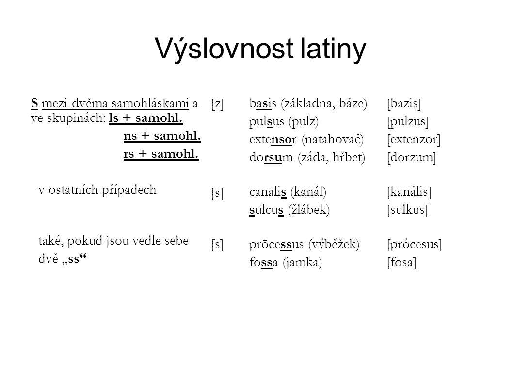 Výslovnost latiny S mezi dvěma samohláskami a ve skupinách: ls + samohl. ns + samohl. rs + samohl.