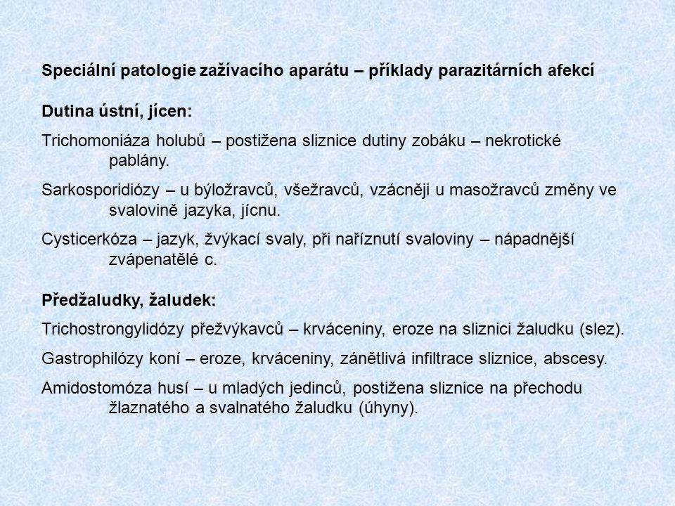 Speciální patologie zažívacího aparátu – příklady parazitárních afekcí
