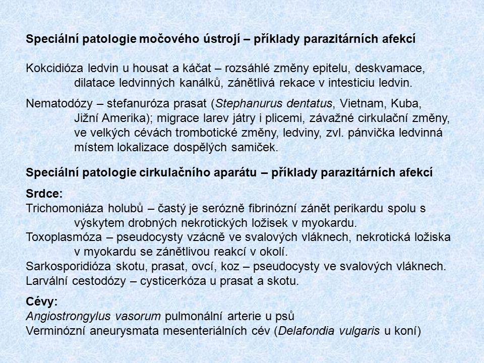 Speciální patologie močového ústrojí – příklady parazitárních afekcí