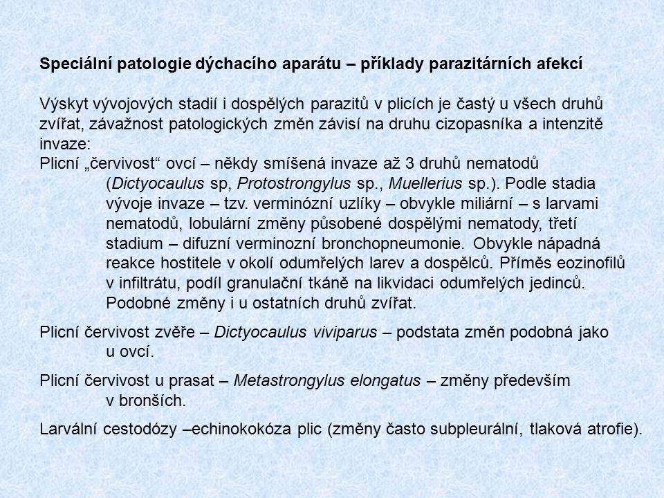 Speciální patologie dýchacího aparátu – příklady parazitárních afekcí