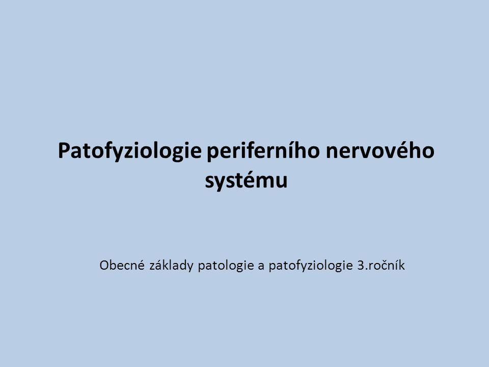 Patofyziologie periferního nervového systému