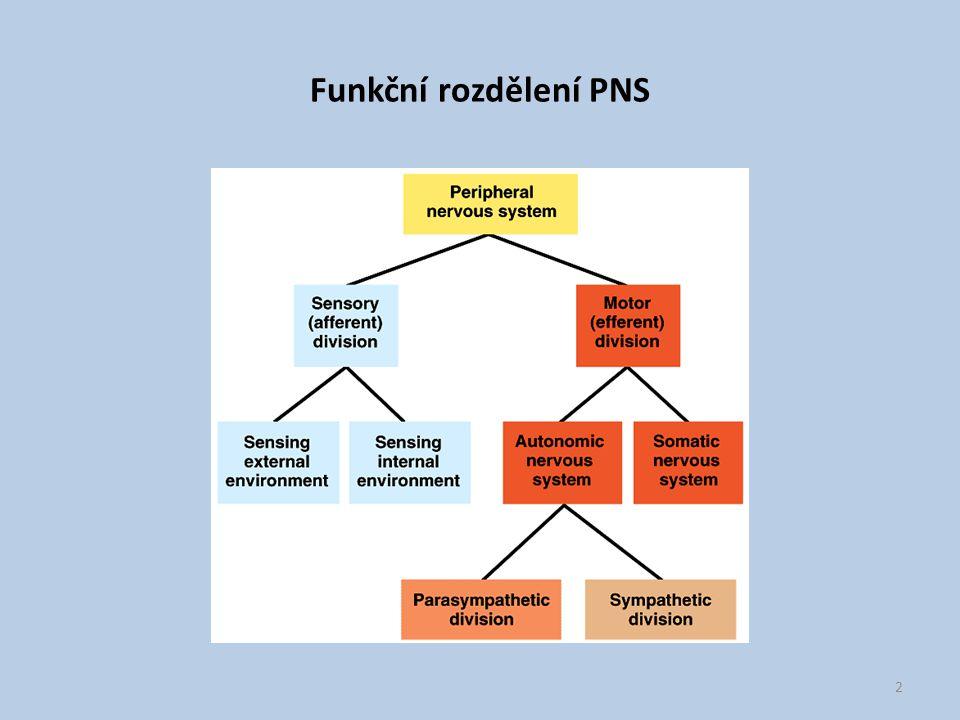 Funkční rozdělení PNS