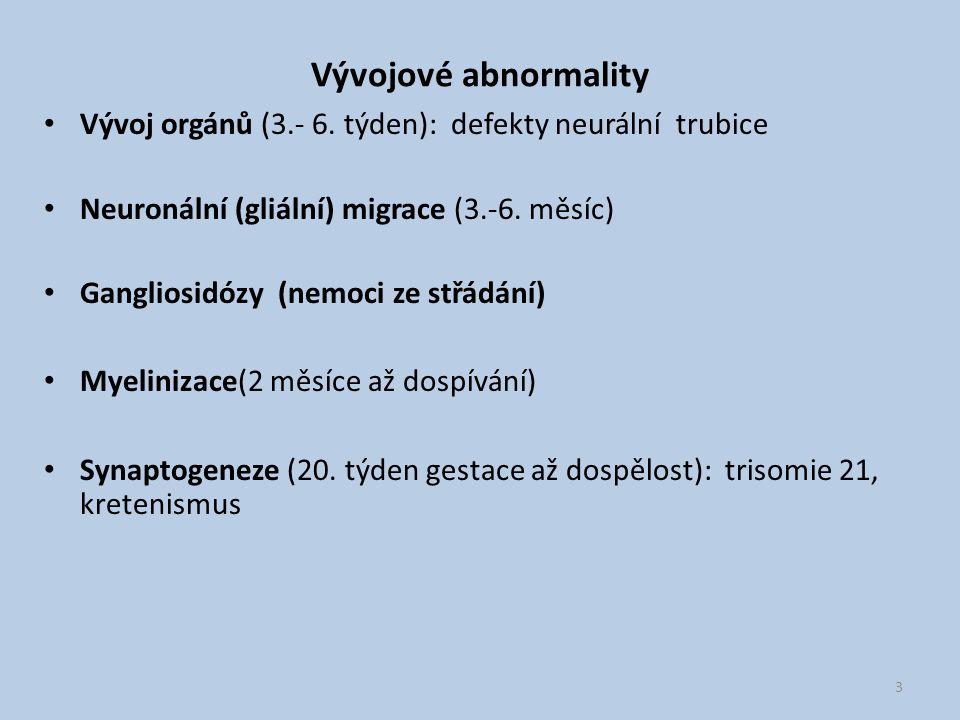Vývojové abnormality Vývoj orgánů (3.- 6. týden): defekty neurální trubice. Neuronální (gliální) migrace (3.-6. měsíc)
