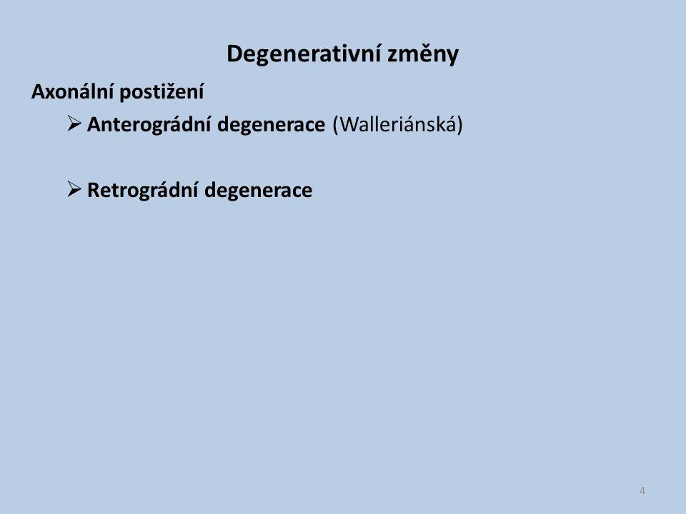 Degenerativní změny Axonální postižení