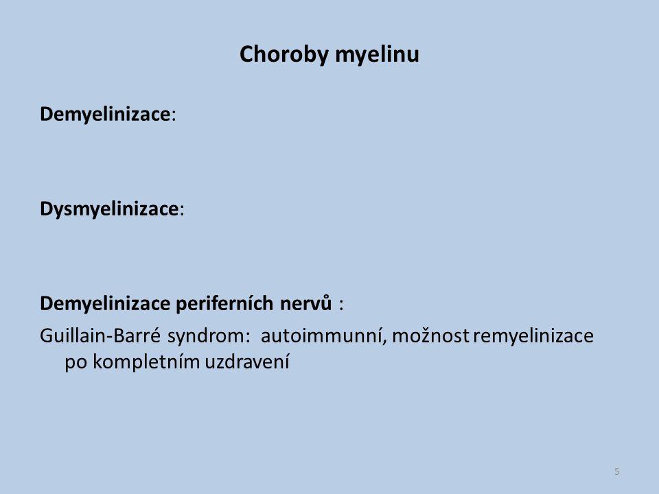 Choroby myelinu Demyelinizace: Dysmyelinizace: