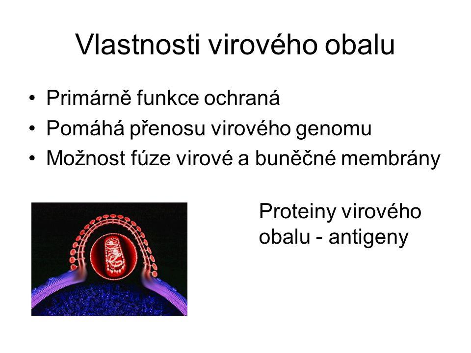 Vlastnosti virového obalu