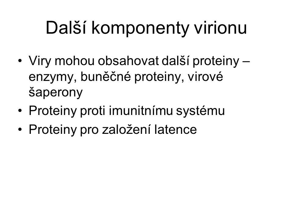 Další komponenty virionu