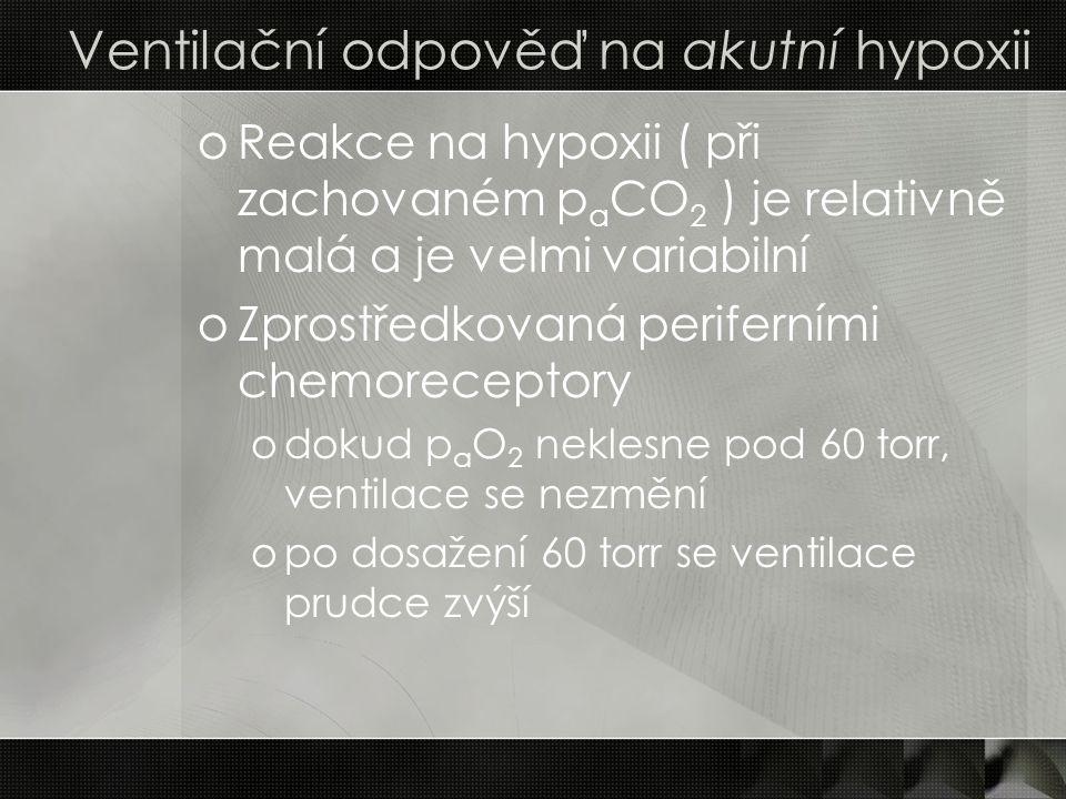Ventilační odpověď na akutní hypoxii