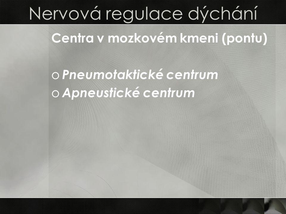 Nervová regulace dýchání