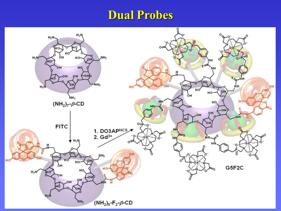Dual Probes