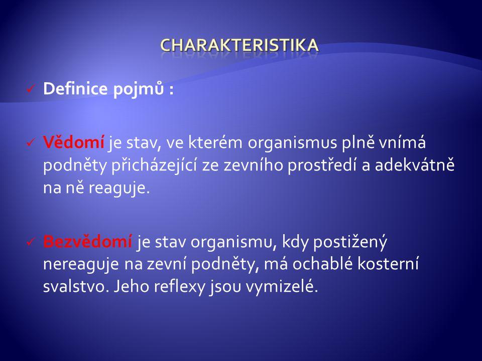 Charakteristika Definice pojmů :