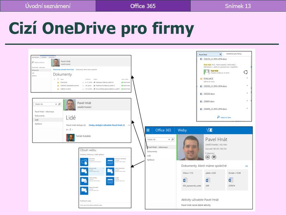 Cizí OneDrive pro firmy