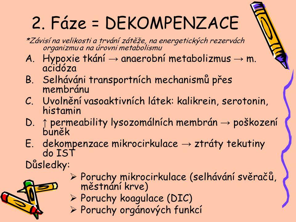 2. Fáze = DEKOMPENZACE *Závisí na velikosti a trvání zátěže, na energetických rezervách organizmu a na úrovni metabolismu.