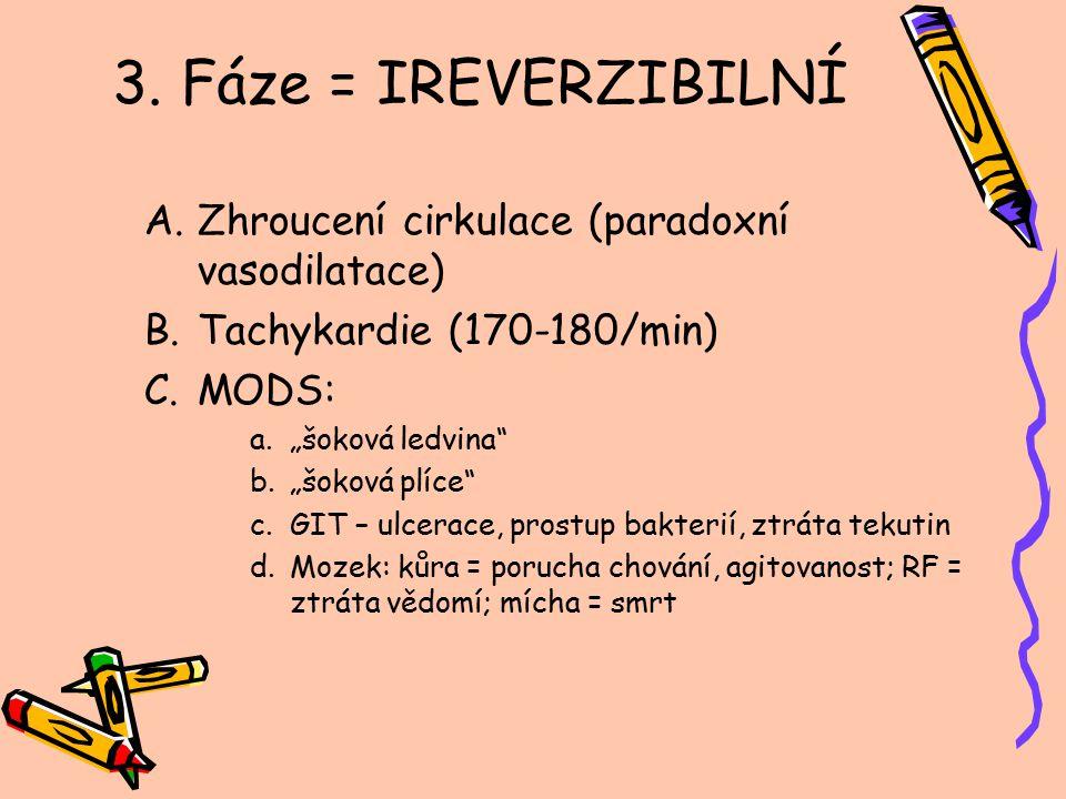 3. Fáze = IREVERZIBILNÍ Zhroucení cirkulace (paradoxní vasodilatace)