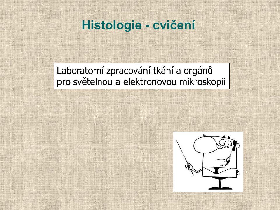 Histologie - cvičení Laboratorní zpracování tkání a orgánů
