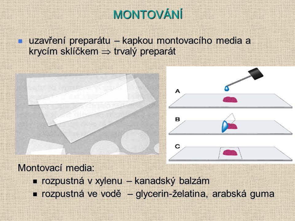 MONTOVÁNÍ uzavření preparátu – kapkou montovacího media a krycím sklíčkem  trvalý preparát. Montovací media: