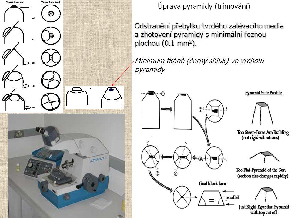 Úprava pyramidy (trimování)