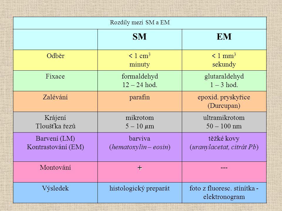 SM EM Odběr  1 cm3 minuty  1 mm3 sekundy Fixace formaldehyd
