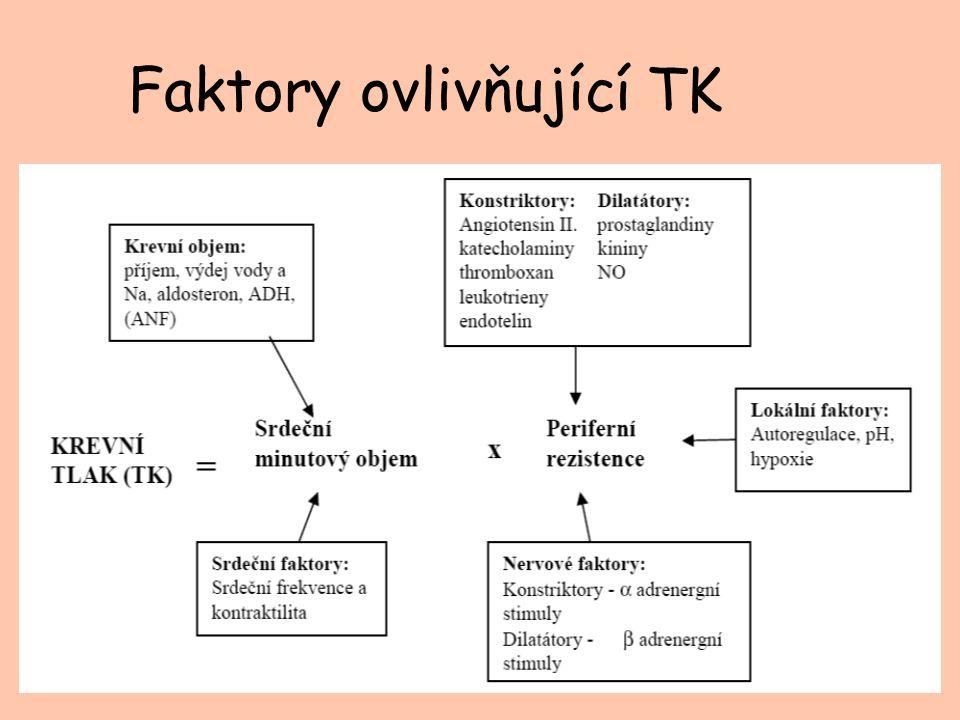 Faktory ovlivňující TK