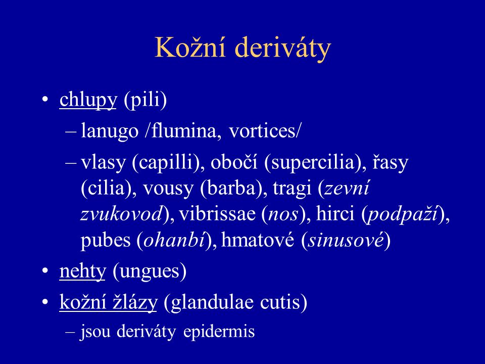 Kožní deriváty chlupy (pili) lanugo /flumina, vortices/