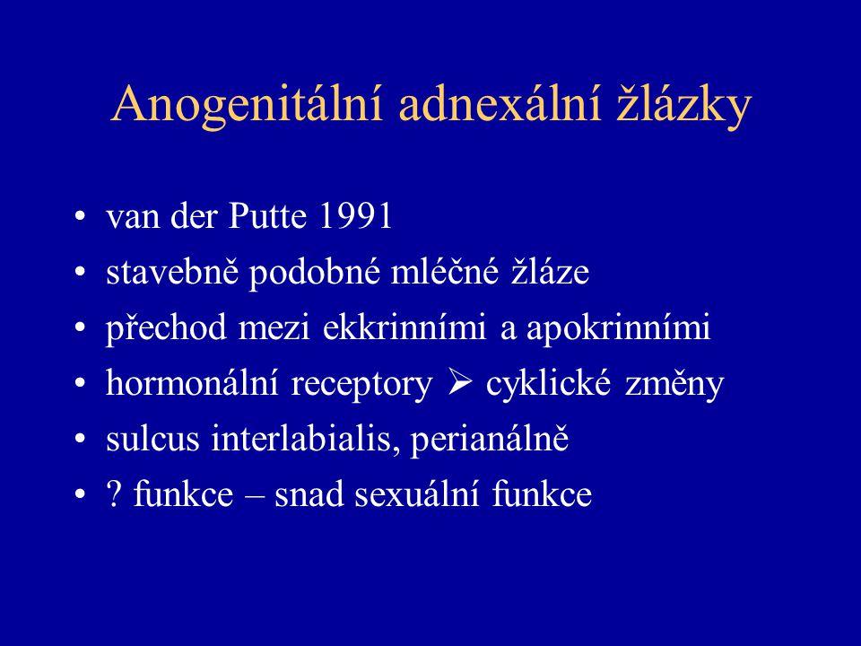 Anogenitální adnexální žlázky
