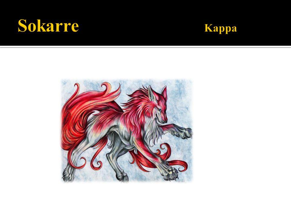 Sokarre Kappa