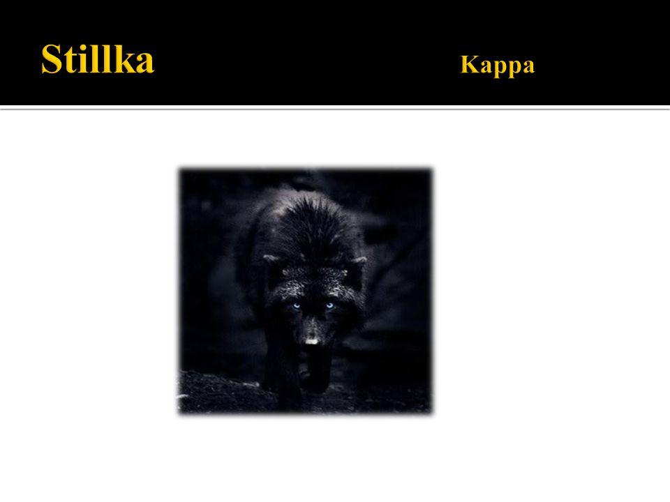 Stillka Kappa