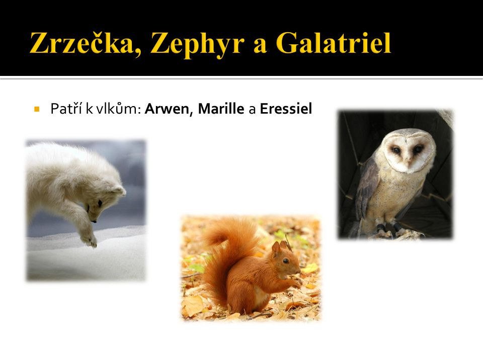 Zrzečka, Zephyr a Galatriel