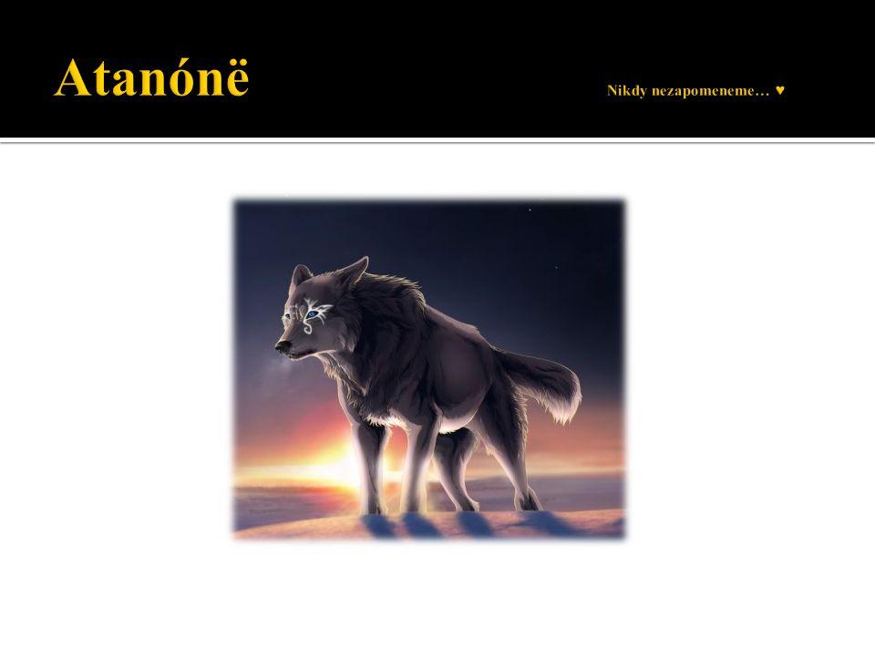 Atanónë Nikdy nezapomeneme… ♥
